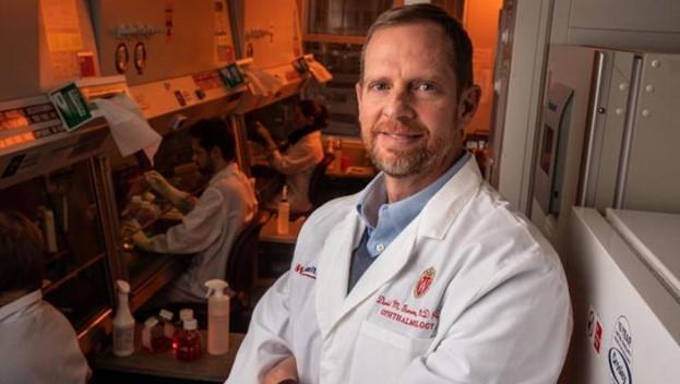 Ученые разрабатывают новый подход к лечению болезни Беста