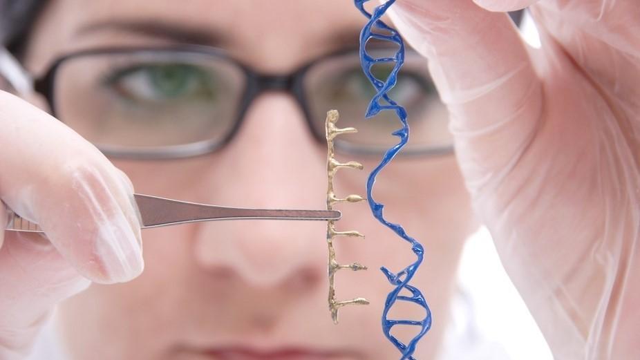Дегенеративные заболевания сетчатки можно лечить с помощью генной терапии