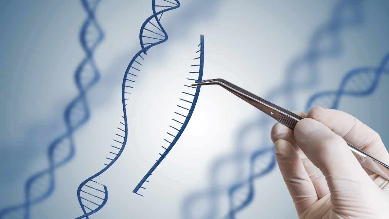 Началось первое исследование терапии CRISPR in vivo для лечения заболевания зрения у человека