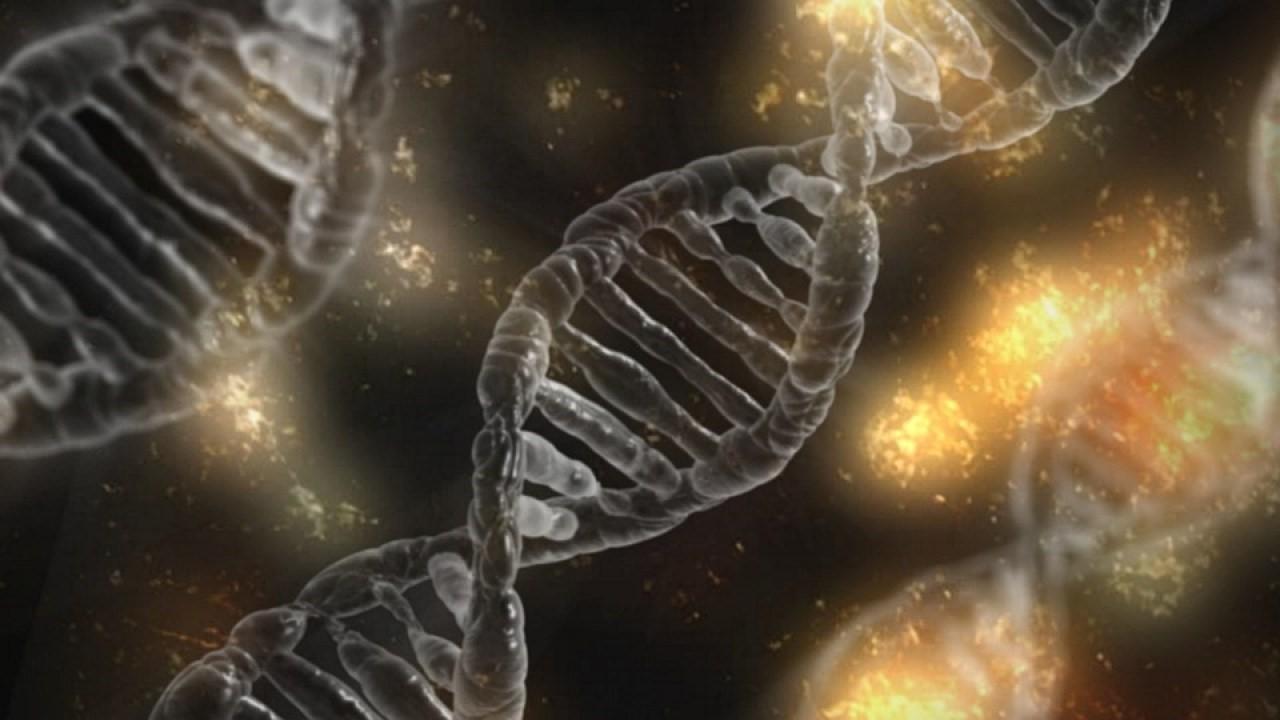 Генный препарат OCU400 компании Ocugen получил орфанный статус