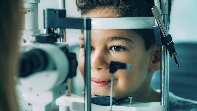 Phylogica доказывает перспективность нового средства для лечения пигментного ретинита