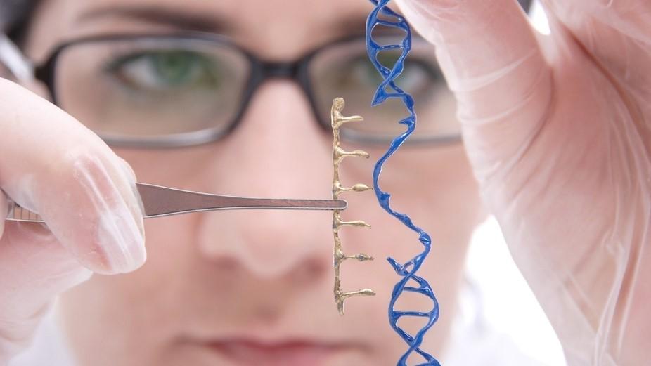 Генная терапия для заболеваний сетчатки дает позитивные результаты