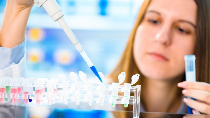 Терапия макулярной дистрофии стволовыми клетками скоро станет доступной